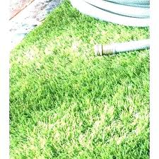 artificial grass rug home depot outdoor turf rug artificial grass rug home depot new outdoor 5