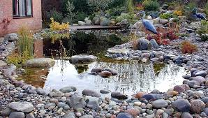 Formal And Natural Garden Pond Designs Landscape Garden Designers Best Pond Garden Design