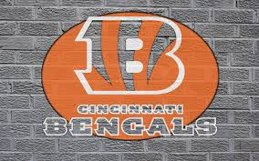 cincinnati bengals nfl football r wallpaper 1920x1200 157681
