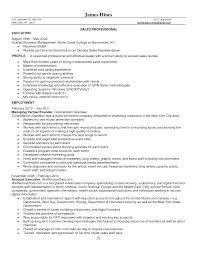 Sales Resume Buzzwords Resume For Study
