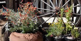 Small Picture Garden Design Garden Design with Plant pots Garden pots Melbourne