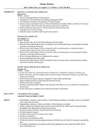 Sample Insurance Assistant Resume Insurance Assistant Resume Samples Velvet Jobs 12