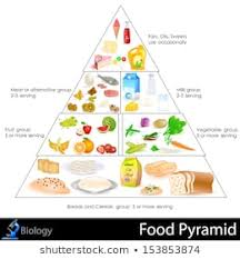 Food Pyramid Images Stock Photos Vectors Shutterstock