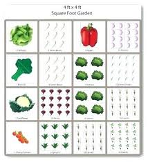 Garden Layout Software Cryptoify Co