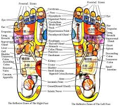 Leg Acupressure Points Chart Bianstone Leg Reflexology Chart Acupuncture Points Chart