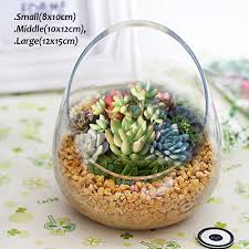 round glass flower vase fish bowl balloon centerpiece wedding giftbox home