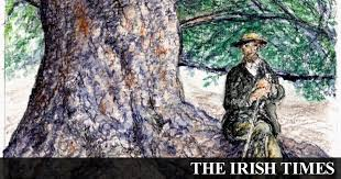 Ireland's native woodlands are quietly disappearing