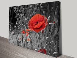 on black and white with a splash of red wall art with poppy colour splash canvas prints australia