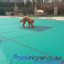 pet safe swimming pool cover safety pool covers c27 safety