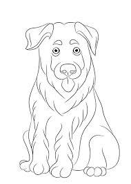 Kleurplaat Hond Met Puppy Foto