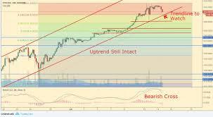 Bitcoin Litecoin Ethereum Charts Cryptocurrency Analysis Bitcoin Ethereum Litecoin Ripple