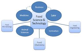 Food Science And Technology California State University
