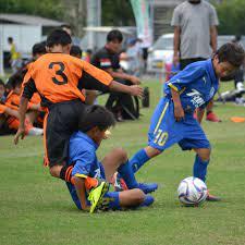 大分 県 サッカー 協会