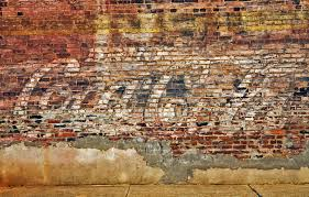 wall dog murals dersden