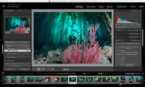 Poly Filter Color Chart Color Filters Vs Post Processing Underwater Photography Guide
