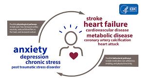heart disease and mental health
