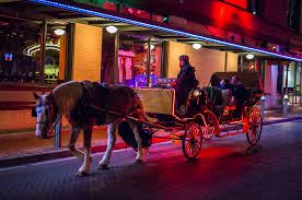 Image result for st augustine carriage ride night