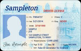 Fake Templates Get Best Templates Driver Identity My In License List 2019 Bucket
