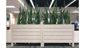 office planter boxes. environments and the people that occupy them creating clean appropriate healthy arrangements of greenery can be challenging intermix planters are office planter boxes t