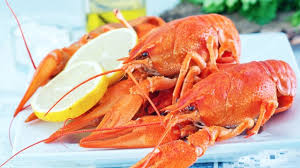 American Lobster Fest set for August ...