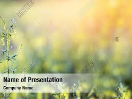 Spring Powerpoint Background Spring Springtime Powerpoint Template Powerpoint Template