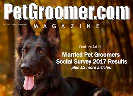 professional reading for pet dog and cat stylists groomers and career seekers