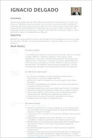 Sample Resume Business Owner Extraordinary Resume Format Template Controller International Thumbnail