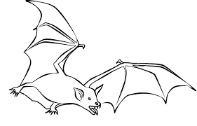 Small Picture Bat Coloring Pages Bat BatColoringPages NiceColoringPagesOrg
