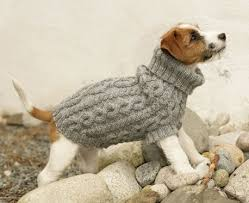 Free Knitted Dog Sweater Patterns Cool Top 48 Free Dog Sweater Knitting Patterns Dog Pinterest Free