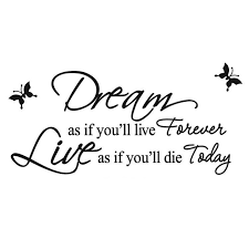 Live Your Dreams Quotes Best of Don'T Dream Your LifeLive Your Dreams Vinyl Wall Decal Quote