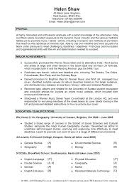 It Resume Profile Examples Simple Resume Format