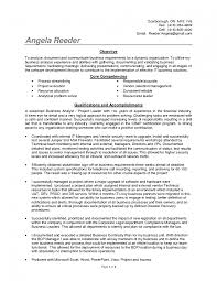 Business Analyst Resume Sample Experience Resumes It Samp Sevte