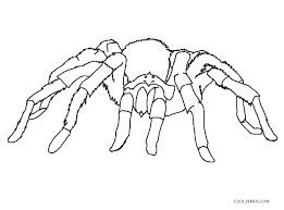 Spiderman Coloring Sheet Coloring Picture Spider Coloring