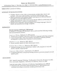 A Great Resume Extraordinary Great Resumes Samples Example Of A Great Resume Great Resumes