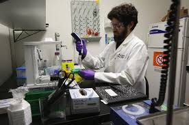 Lab Analyst Some Pot Labs In State Failed No Pot At All Says Scientist