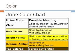 Urinalysis Color Chart Urine Analysis Pptx