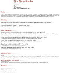 Resume Profile Section Musiccityspiritsandcocktail Com