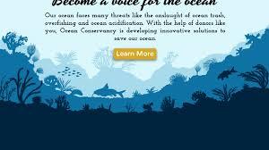 Blue Mountains Web Design Illustrator For Web Design