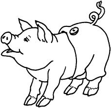 Maiale Animale Da Fattoria Disegno Per Bambini Disegni Da Colorare
