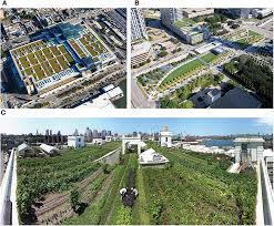 frontiers urban rooftop agriculture