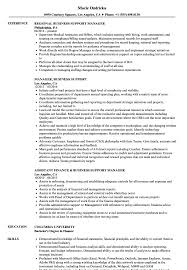 Business Support Manager Sample Resume Manager Business Support Resume Samples Velvet Jobs 1