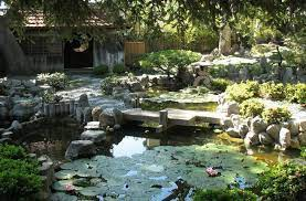 lessons from a zen garden what s