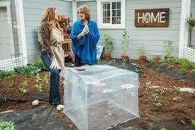 vegetable garden critter control cages under 20 dollars