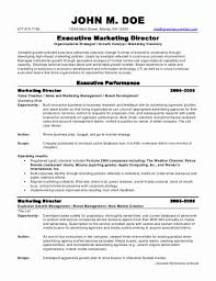sample resume marketing marketing director resume examples examples of resumes