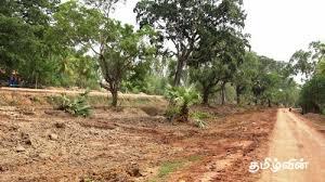 Image result for கிளிநொச்சி திருவையாறு கிராமம்