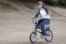 raleigh chopper bicycle clic