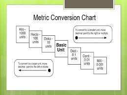 The Metric System Ms Ryan Mcatc Medical Math Ppt Download