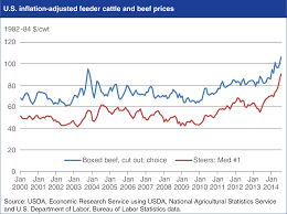 Drought Leads To Us Beef Decline Meat Packing Journal