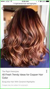 Light Cherry Brown Hair Brown Cherry Hair Color 6629 Hairstyles Goldn Copper Hair