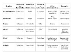 6 Kingdoms Of Life Chart Six Kingdoms Of Life Worksheet Worksheet_answers